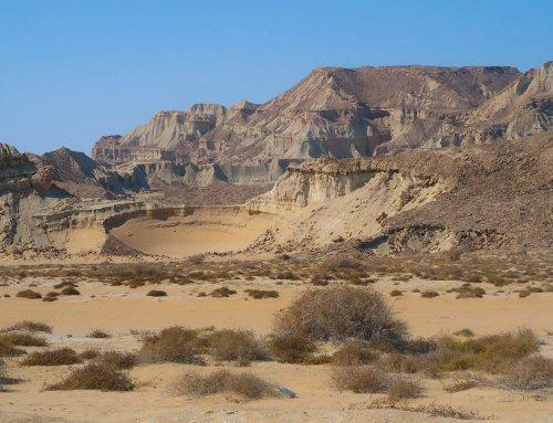 Your Ultimate Qeshm Island Travel Guide, Iran